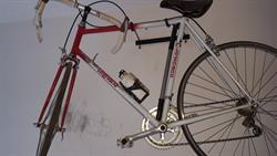 Bicicletta Legnano Su Lapulceit Bici